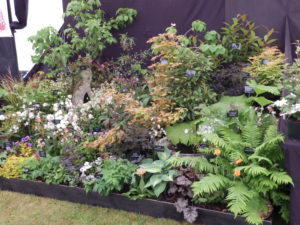 The Suffolk Show 2015