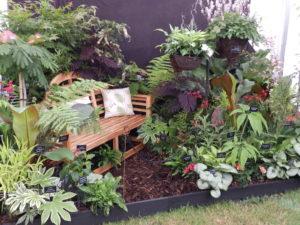 Sandringham Flower Show 2016