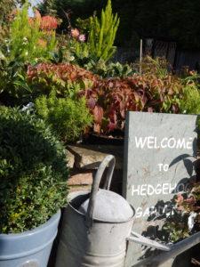 Hedgehog Gardens at Hopton