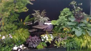 Sandringham Flower Show 2017